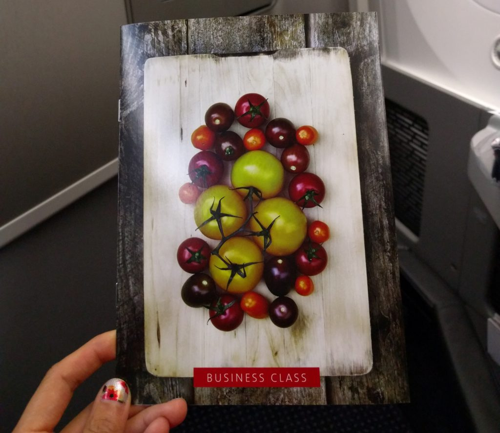 Getting to Chile with Award Travel on AA and Plane Review - DFW to SCL