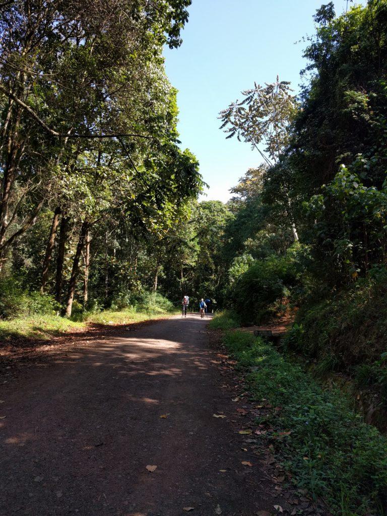 Climbing Mount Kilimanjaro Trip Report (Days 6-7) - To Mweka Gate