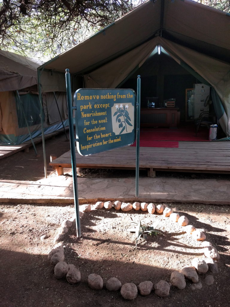 Photo Journal: Tanzania Safari in 7 Days - Lake Manyara National Park