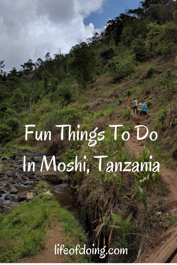 Fun Things To Do in Moshi, Tanzania