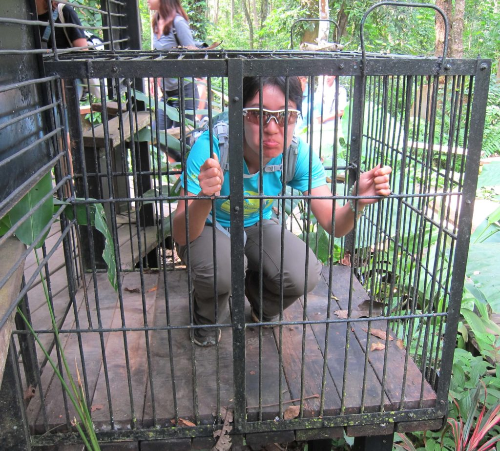 Top 8 Reasons To Visit Luang Prabang, Laos Now - Bear Rescue Center