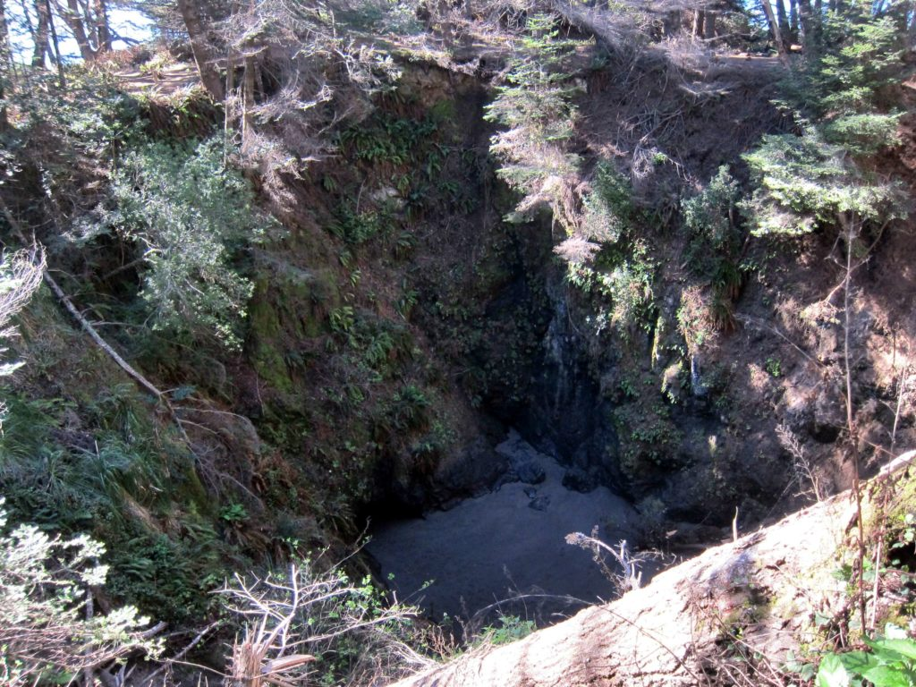 Things To Do For Weekend Along Mendocino Coast - Mendocino, California Blowhole Trail Sinkhole