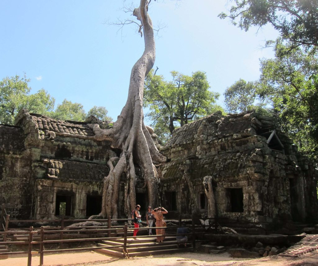 3 Days of Temples Galore in Siem Reap, Cambodia - Ta Prohm