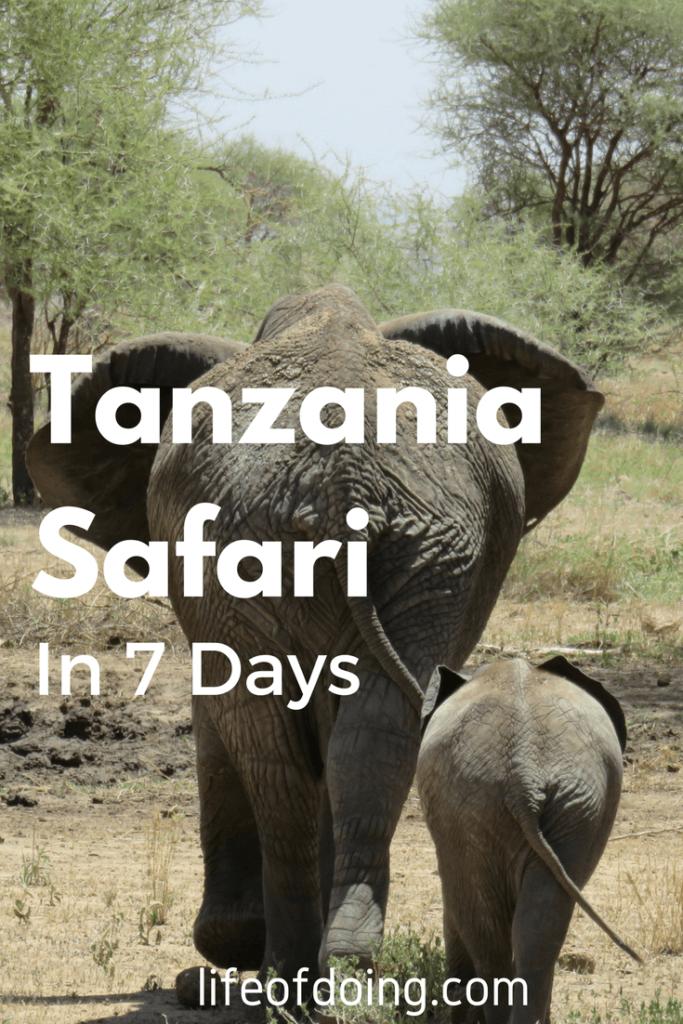 Photo Journal: Tanzania Safari in 7 Days