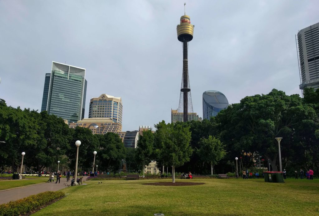 Hyde Park with a view of the Sydney Tower in the background.