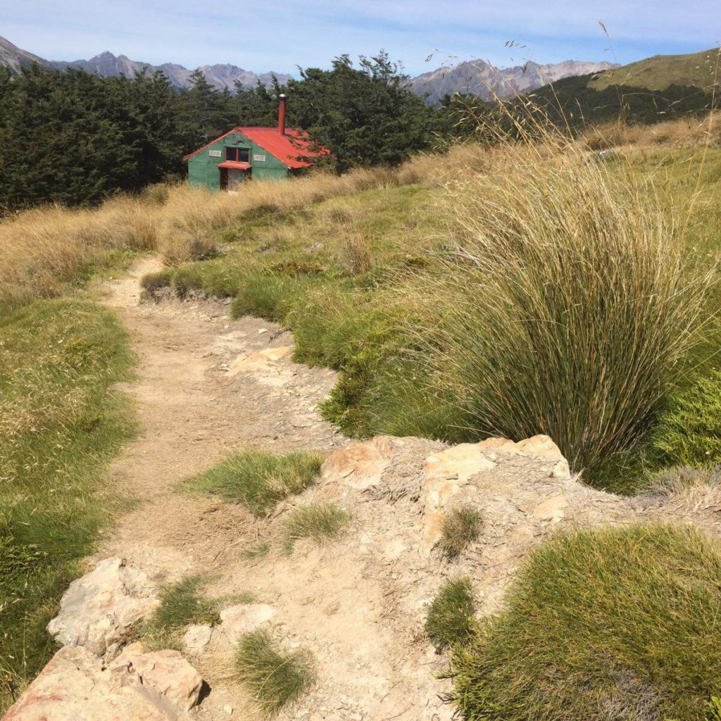 Hiking Mount Robert Circuit in Nelson Lakes National Park, New Zealand