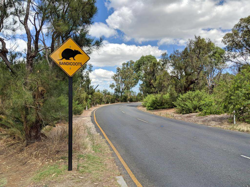 Perth, Australia Things To Do - Kings Park Bandicoot Sign