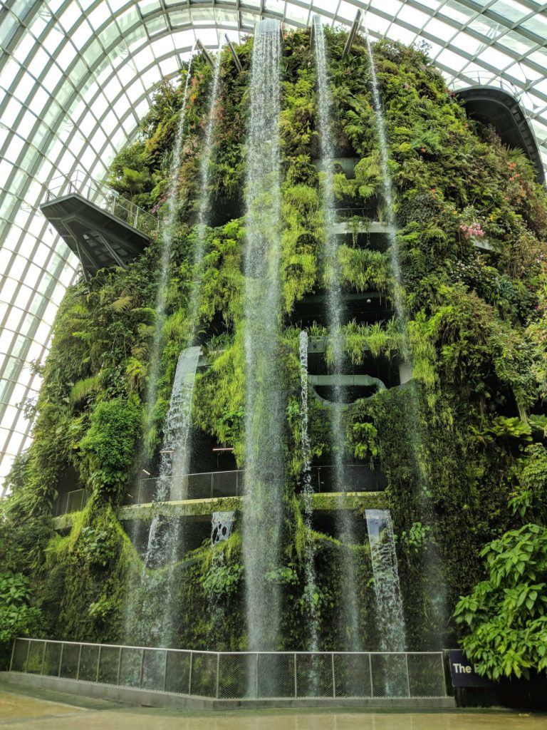 As you enter the Gardens By The Bay's Cloud Forest, you see a tall building with plants coming out of it and a waterfall.