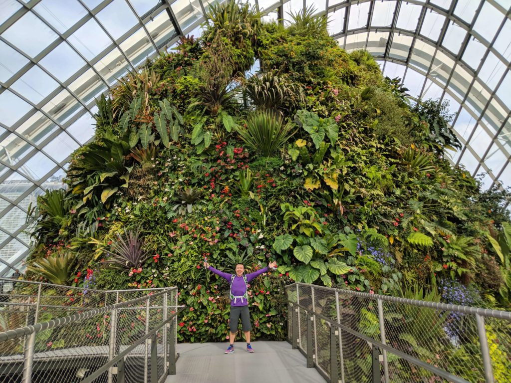 The Gardens By The Bay's Cloud Forest is a beautiful place to take photos of various plants.