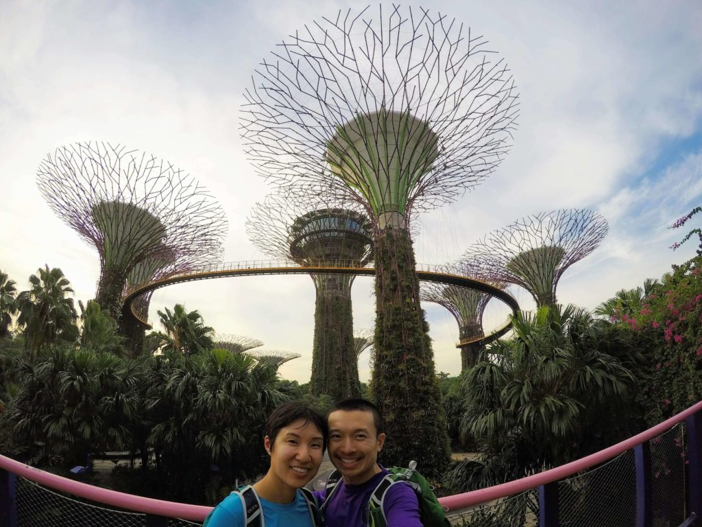 Supertree Grove at the Gardens By The Bay is a great spot for a Singapore layover.
