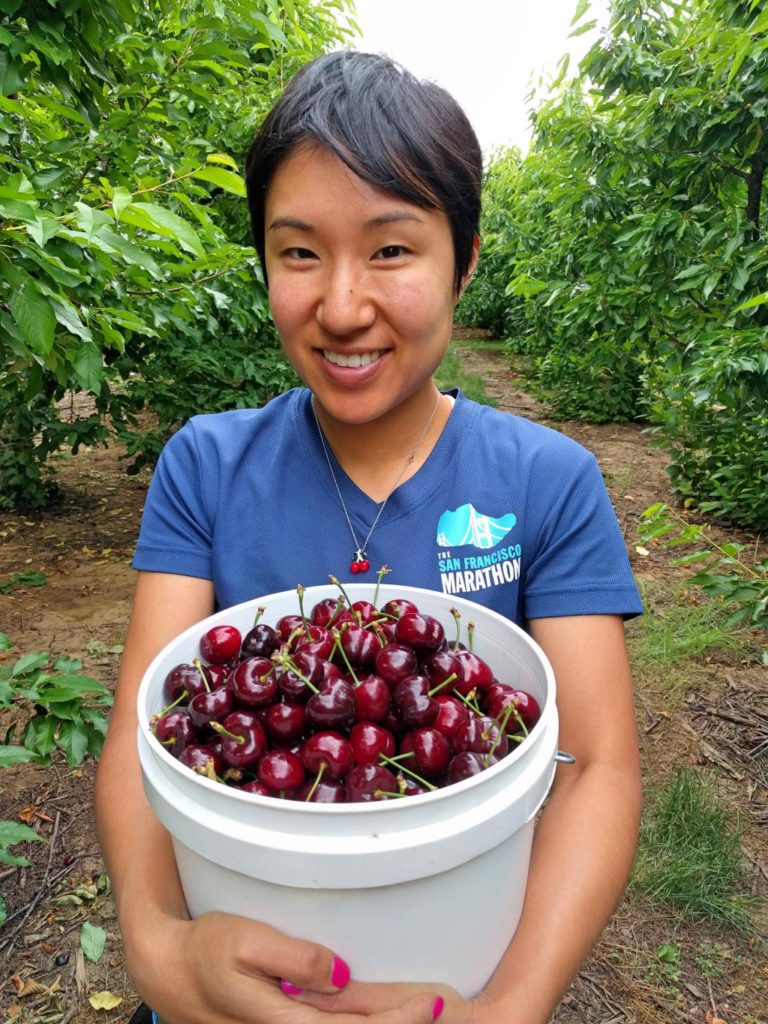 Woman holding a bucket of picked cherries at one of the cherry picking farms in Brentwood, California