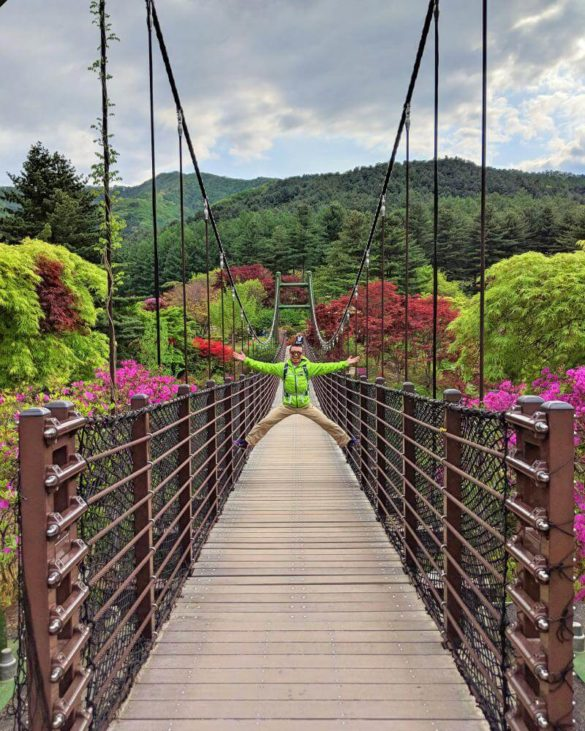 """""""Cloud Bridge"""" suspension bridge at Garden of Morning Calm in Gapyeong, South Korea"""