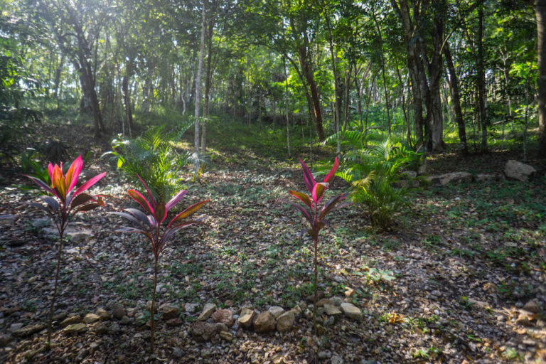 Caves Around The World in Central America: Table Rock Jungle Lodge in San Ignacio, Belize