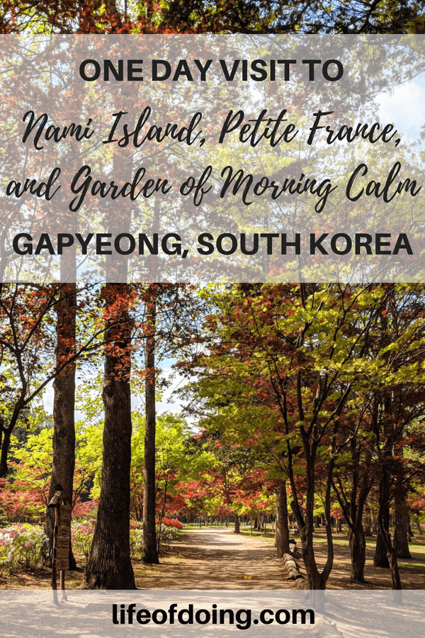Planning a trip to Gapyeong, South Korea? Check out this guide on how to visit Nami Island, Petite France, and Garden of Morning Calm in one day including what to see in Nami Island, Petite France, and Garden of Morning Calm, and how to visit these places via local transportation instead of a tour. #namiisland #petitefrance #gardenofmorningcalm #southkorea