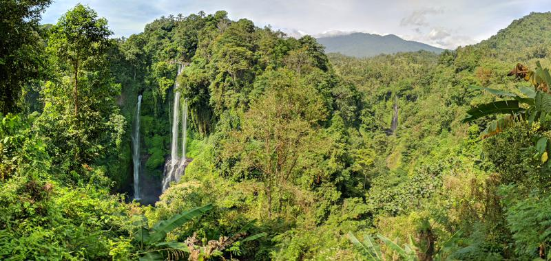 Sekumpul Waterfall and Fiji Waterfall in Bali