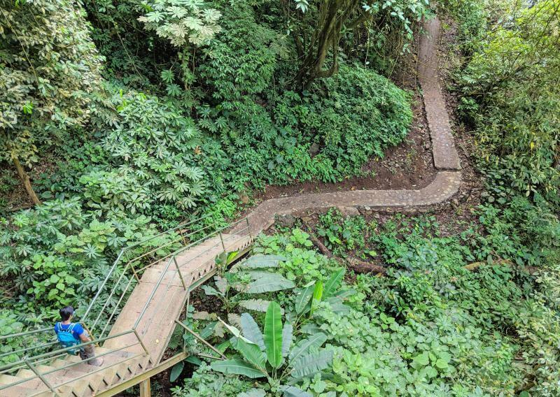 Sekumpul Waterfall in Bali: stairways to go down to the waterfall