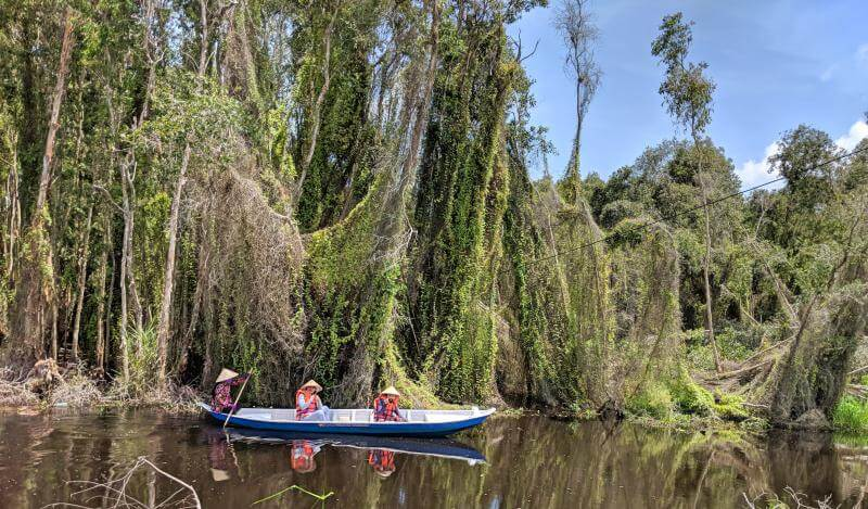 Tan Lap Floating Village, Long An, Vietnam Boat Ride Through Melaleuca Forest