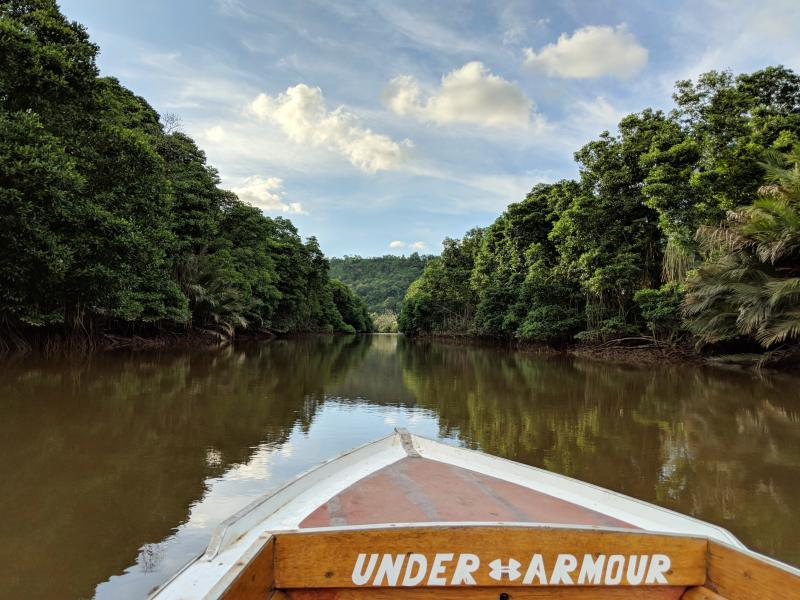 Brunei Layover: Mangrove Tour on a boat