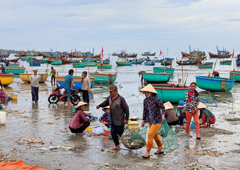 Mui Ne, Vietnam Things to Do: Fishing Village in the Morning