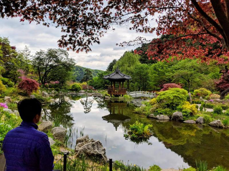 Seoul in 5 days: Gapyeong Day Trip at Garden of Morning Calm