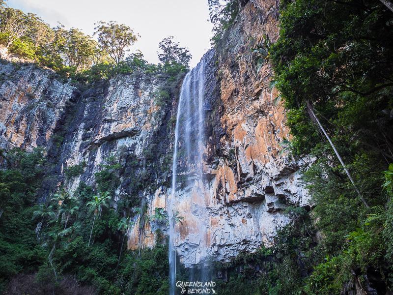 Purling Brook Falls, Queensland, Australia