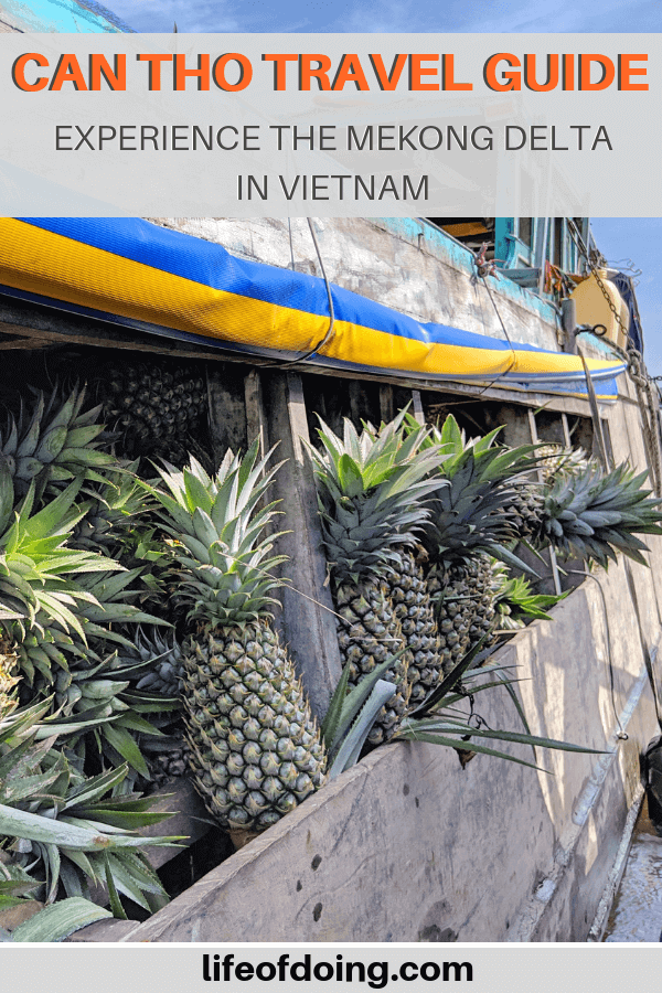 Can Tho, Vietnam travel guide which includes the famous Cai Rang Floating Market, so you can see boats filled with produce for sale, such as pineapple!