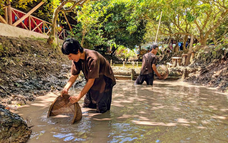 When you're in Ben Tre, you can try fishing for snakehead fish using baskets. It's quite challenging in the muddy waters.