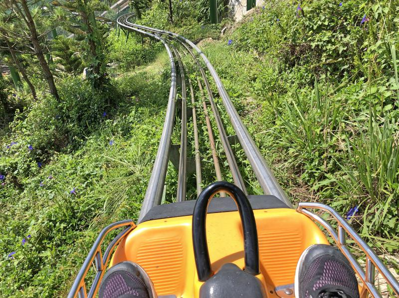 We're riding in an alpine coaster at Ba Na Hills resort. You'll pass through the luscious greenery and also get the chance to control the speed of your vehicle.