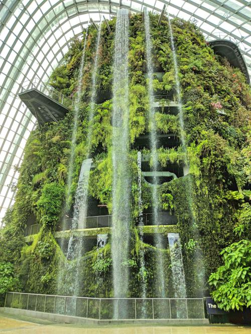 Waterfall at entrance of Gardens by the Bay Cloud Forest