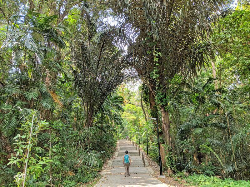 Jackie Szeto, Life Of Doing, hikes up the stairways and surrounded by greenery in Mount Faber in Singapore.