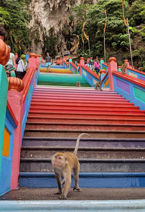 Batu Caves with monkeys on the colorful stairways