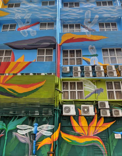 Street art of dragon flies and Birds of Paradise on a building in Bukit Bintang, Kuala Lumpur