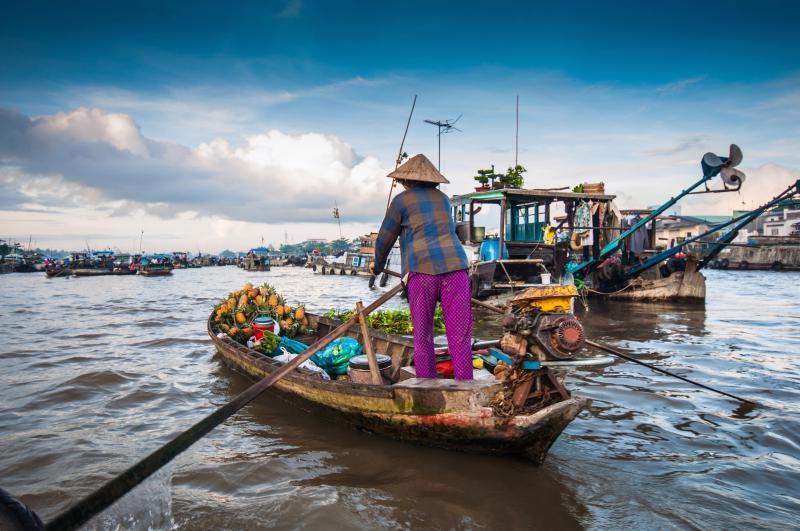 Woman selling pineapples rows a sampan along the Mekong Delta, Vietnam.