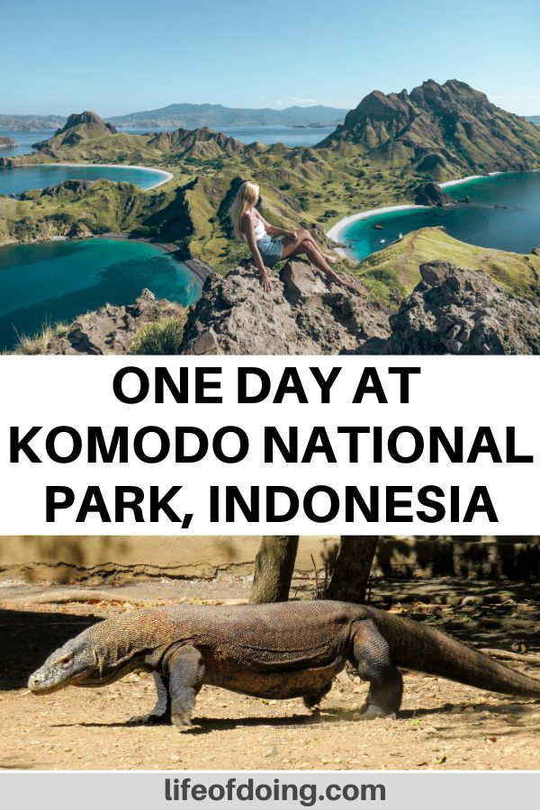 How to spend one day at Komodo National Park in Indonesia which includes a hike up Padar Island and also seeing the Komodo dragons on Rinca Island or Komodo Island.