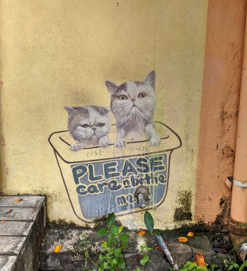 "Take care of the stray cats in the Penang George Town area. Street art of two cats with a message ""Please care n bathe me."""