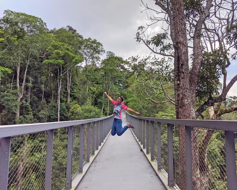 Check out Penang Hill's The Habitat to wander through the rain forest and also walk (or jump) on the suspension bridge.