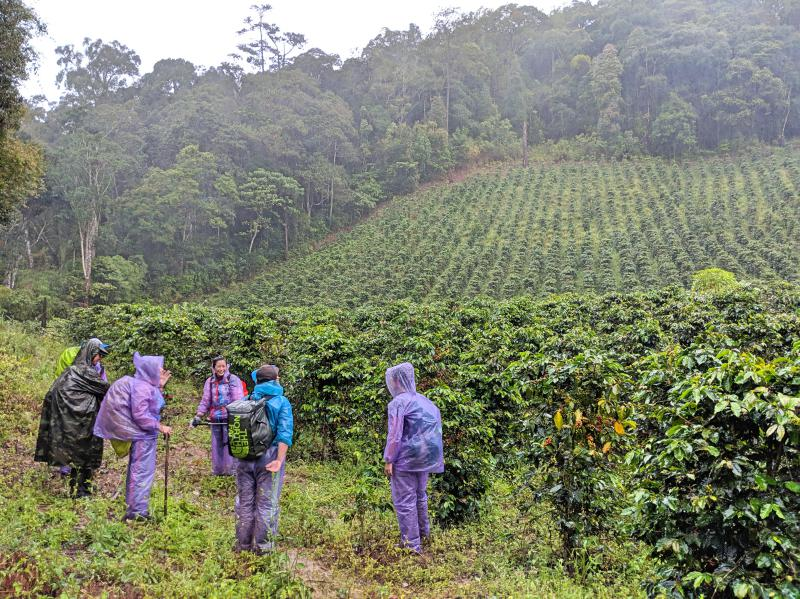 Group of hikers take a rest break next to a coffee plantation on their Bidoup trek.