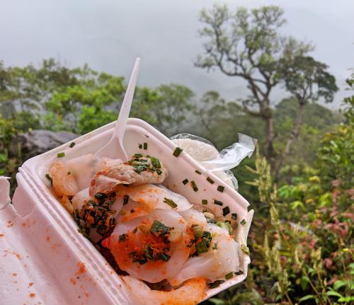 Banh beo (steamed rice cakes) is our lunch during our Bidoup trek. We have an amazing forest view from our Bidoup Nui Ba National Park viewpoint..