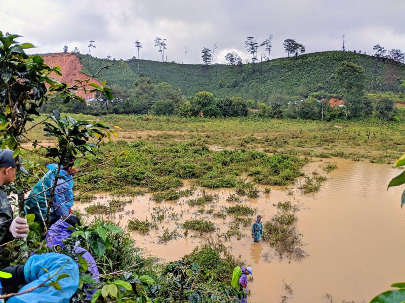 Hikers have to cross a mud-filled lake during the second day of the Bidoup trek in Dalat, Vietnam.