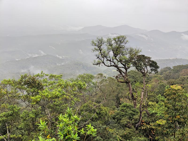 Viewpoint of the Bidoup Nui Ba National Park forest and mountains in Dalat, Vietnam