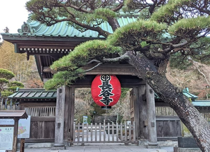 The gate near the front of the Hasedera Temple with a red lantern and tree. This is one of the spots to visit on your Kamakura day trip.