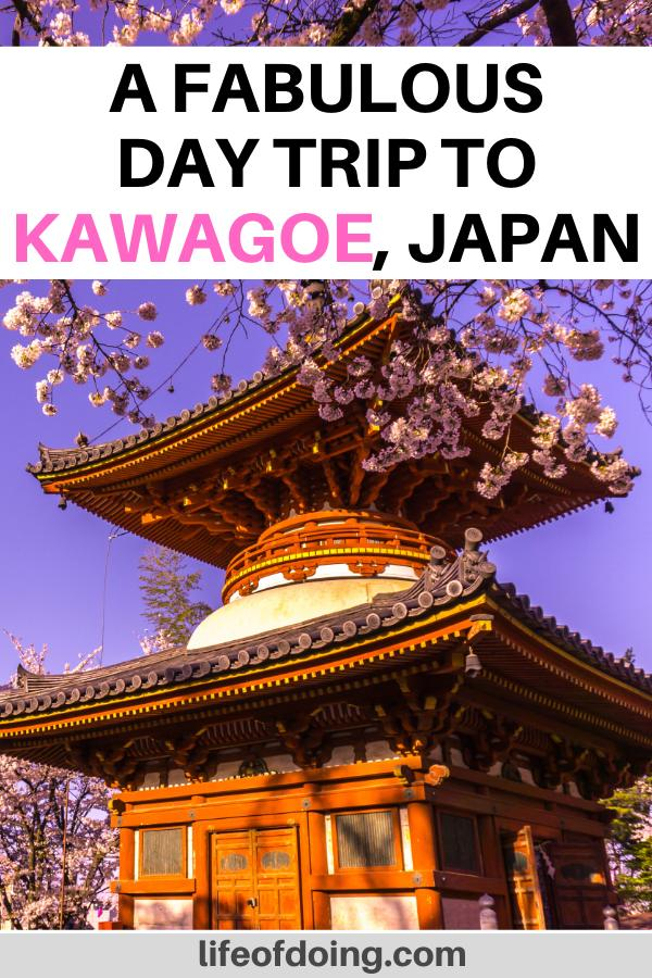 A visit to the Kitain Temple is a great way to spend the day at Kawagoe, Japan. During the spring time, there are lots of cherry blossoms around the temple.