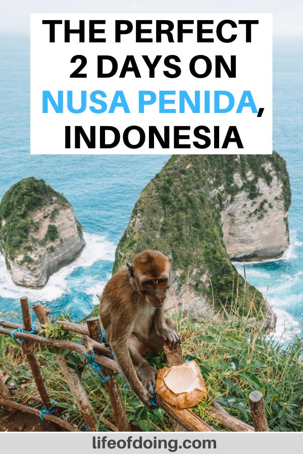 Here is the best 2 days on Nusa Penida itinerary which includes a visit to the famous Kelingking Beach. You may even encounter a monkey eating a coconut at the beach.
