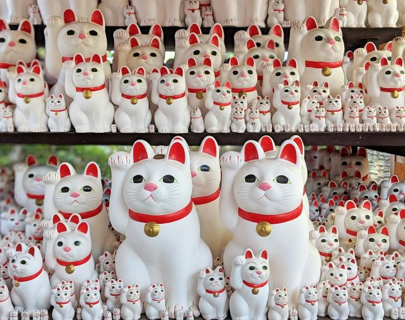 The lucky cats, maneki-neko, are everywhere at the Gotokuji Temple in Tokyo, Japan. It's a unique place to visit in Tokyo.