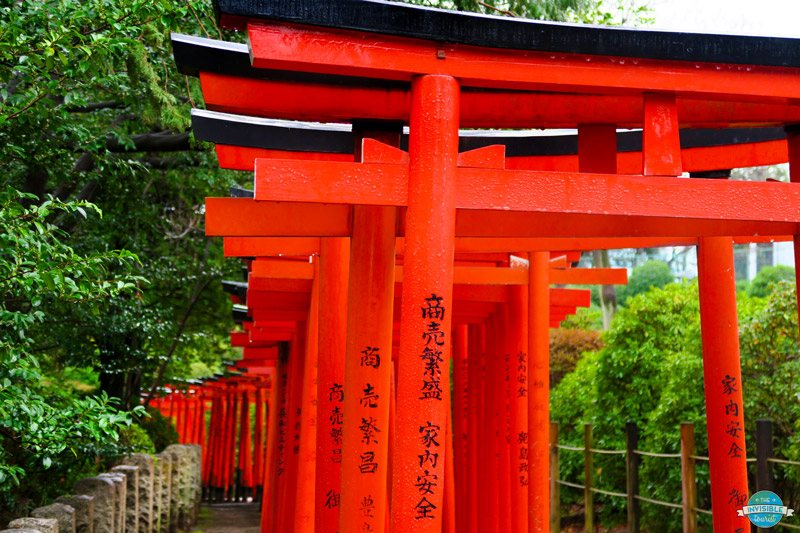 Visit the Nezu Shrine with the orange torii gates in Tokyo, Japan. It's a hidden gem and a unique place to visit in Tokyo.