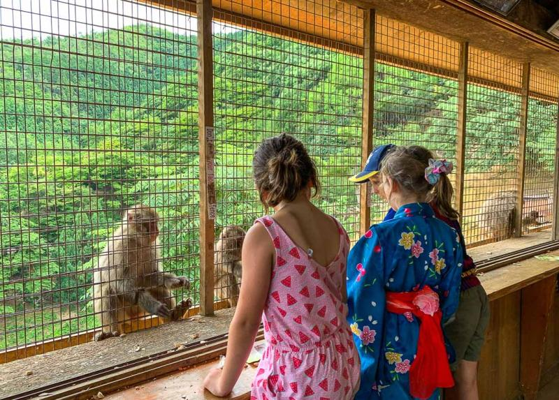 Children observe the monkeys through cages at Arashiyama Monkey Park Iwatayama in Kyoto, Japan