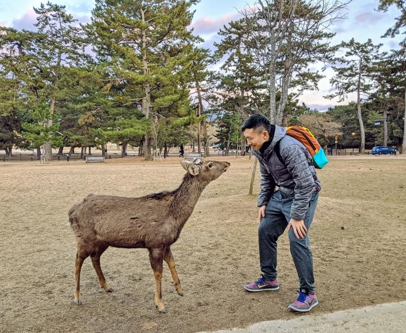 Justin Huynh, Life Of Doing, greets a deer in Nara, Japan