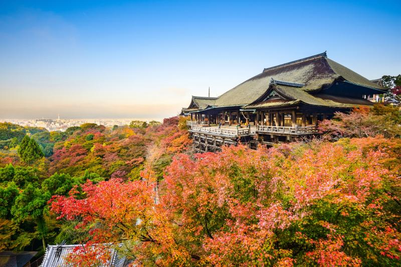 Kiyomizu-dera Temple is a gorgeous photo spot with the main hall overlooking the mountains and Kyoto city and surrounded by fall leaves.