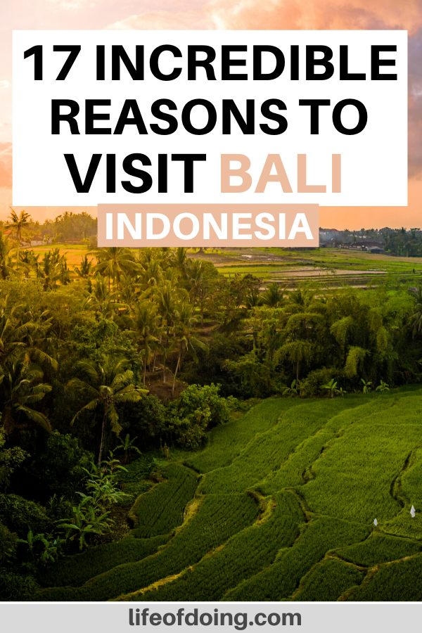 Seeing the green rice fields at sunrise is one of the reasons to visit Bali, Indonesia