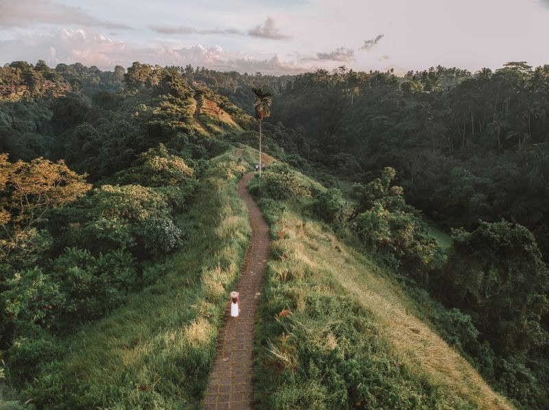 Campuhan Ridge Walk is the perfect place for a walk and to see the greenery when you're in Ubud area of Bali, Indonesia